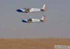 Al-Ain International Aerobatics Show
